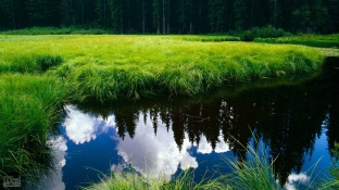HD_beautiful_nature_landsacpe_19203