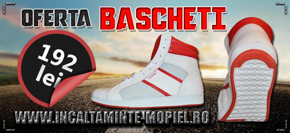 banner-bascheti-oferta