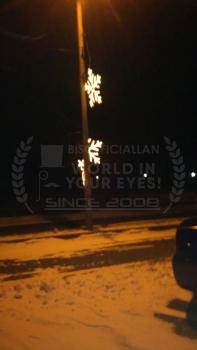 bisofficiallan1